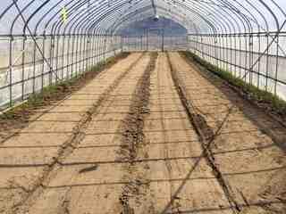 堆肥散布後耕耘.jpg